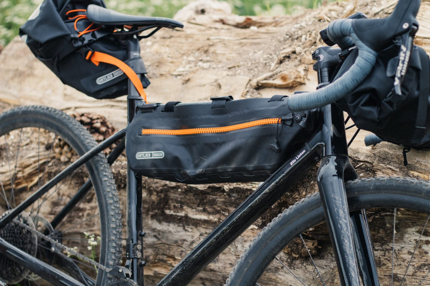 Ortlieb bike packing luggage on liv brava resting on a log on king alerts way cycle route
